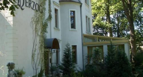 Hotel Villa Herzog