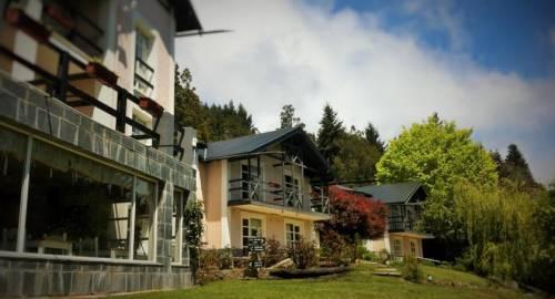 Aldea Andina Resort