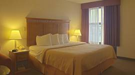 Quality Inn and Suites Indianapolis